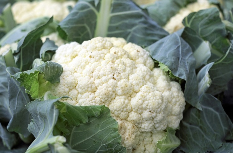 Cauliflower Strong Fit Well