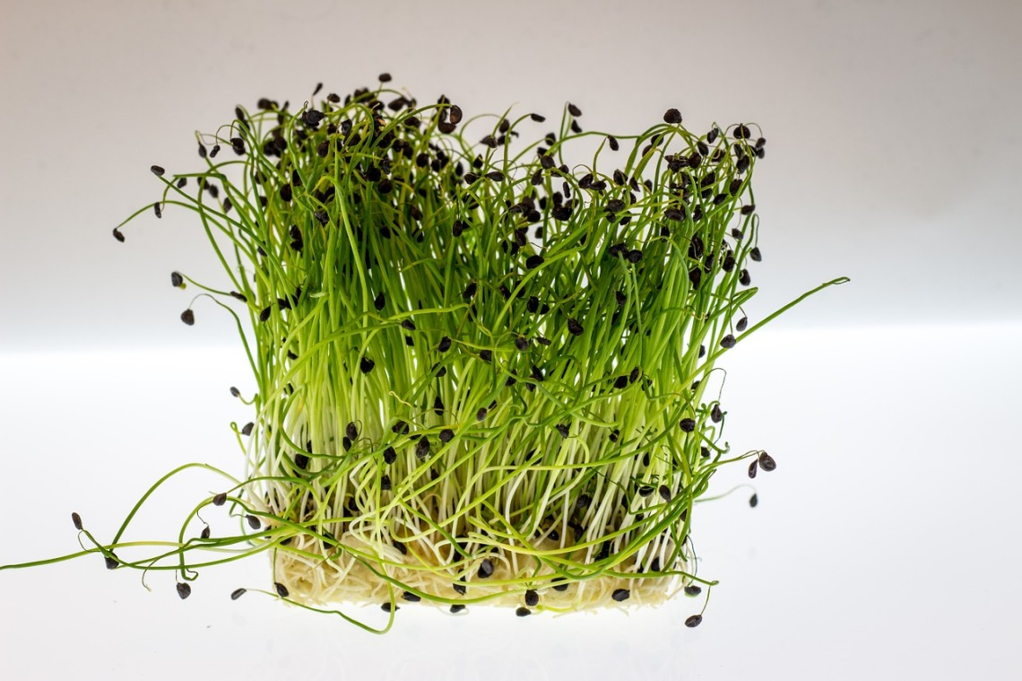 Watercress Strong Fit Well