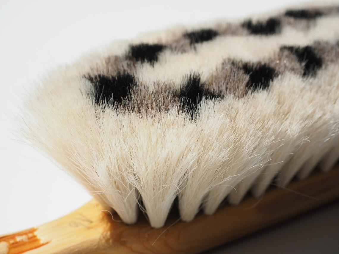 goat-hair-brush-592399_1280