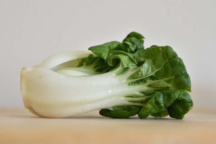 Bok Choy Strong Fit Well