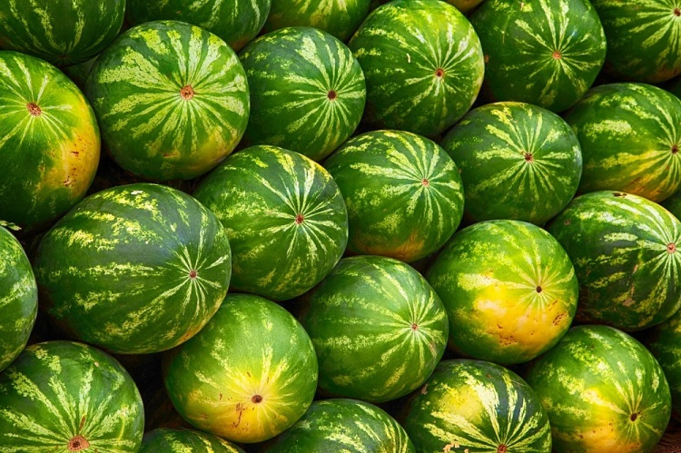 Watermelons Pixabay Strong Fit Well